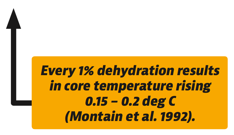 Hydration Effects on Thermoregulation
